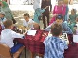Шахматный шатер